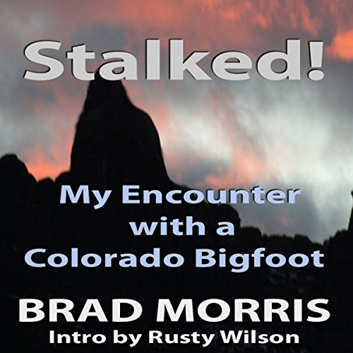 Stalked! audiobook cover art