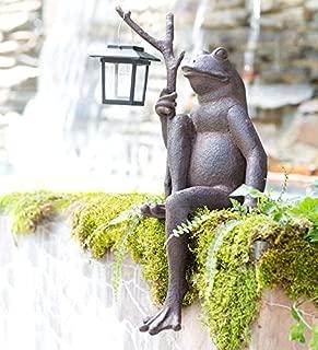 Wind & Weather Sitting Frog Garden Statue with Solar Lantern