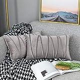 UPOPO Juego de 2 fundas de cojín de terciopelo, decorativas de un solo color, a rayas, para sofá, dormitorio, salón, con cremallera, 30 x 50 cm, color gris claro