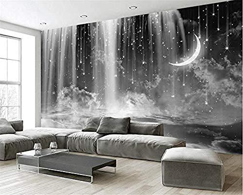 Benutzerdefinierte Tapete Wohnzimmer Schlafzimmer Wandbild Tapete Schwarz-Weiß-Wasserfall Himmel Mond Hintergrundwa Tapete wandpapier fototapete 3d effekt tapeten Wohnzimmer Schlafzimmer-350cm×256cm