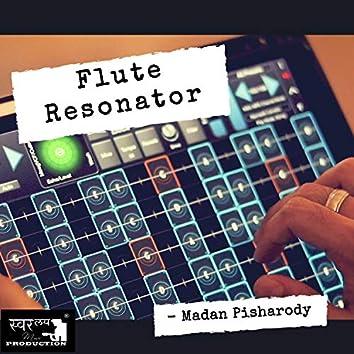 Flute Resonator