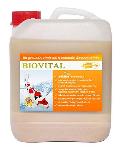 pondovit Biovital 5000 ml Milchsäurebakterien, probiotische Filterbakterien, Koi, Teich