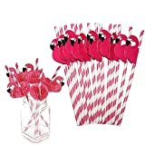 BELLE VOUS Pajitas de Papel (Pack de 100) - 20cm Pajitas Ecol├│gicas Flamenco Rosa - No Toxicas, Biodegradables a Rayas - Pajitas sin Pl├бstico para Fiestas de Cumplea├▒os, Bodas, Piscinas y Cocteles
