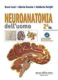 neuroanatomia dell'uomo