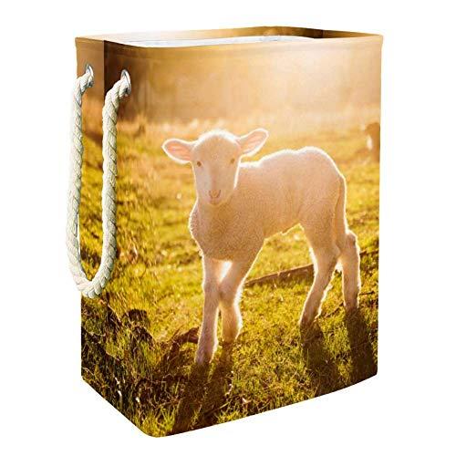 Vockgeng Chaoyang Grassland White Sheep Aufbewahrungskorb Große Faltbare wasserdichte Wäschekorb Spielzeug Aufbewahrungstasche mit Tragegriffen 49x30x40.5 cm