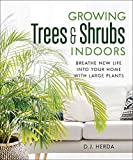 Growing Trees & Shrubs Indoors: Breathe New Life into Your Home with Large Plants