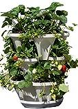 3 Tier Stackable Herb Garden Planter Set - Vertical Container Pots for Herbs, Strawberries, Flowers