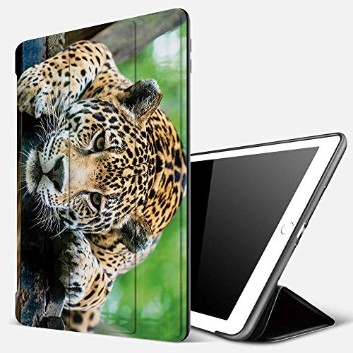 Funda iPad 10.2 Inch 2018/2019,Selva, Jaguar Sudamericano Animal Salvaje Carnívoro Imagen de Safari Felino en Peligro, Naranja Negro Verde,Cubierta Trasera Delgada Smart Auto Wake/Sleep