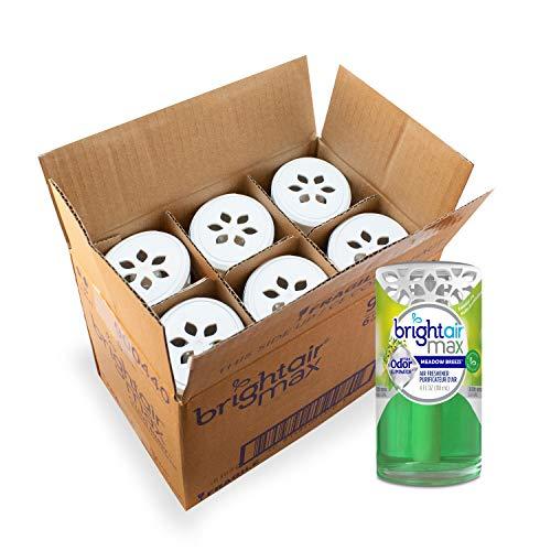 Bright Air Max Odor Eliminator Air Freshener, Green
