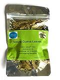Hojas de guayaba, 100 hojas de guayaba naturales secas, hojas de guayaba saludables, hojas de guayaba naturales sin OMG