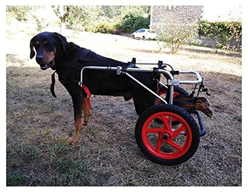 Silla de Ruedas para Perros,Ciclomotor Scooter para Mascota,Adecuado para Perro...