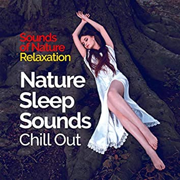 Nature Sleep Sounds - Chill Out