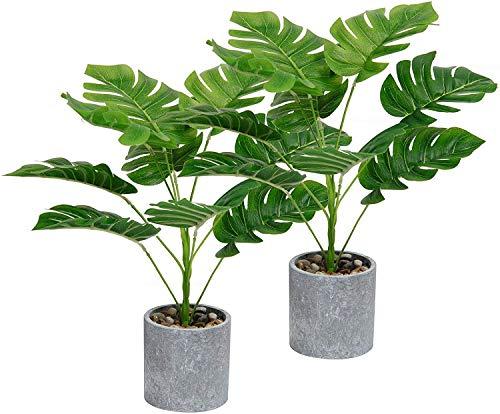 SHACOS 2 Stück Zimmerpflanze Monstera Blätter Tropische Pflanzen mit Topf Grün Künstliche Kunstpflanzen Innenbereich Dekopflanze Groß für Fensterdeko,Garden,Büro,usw.