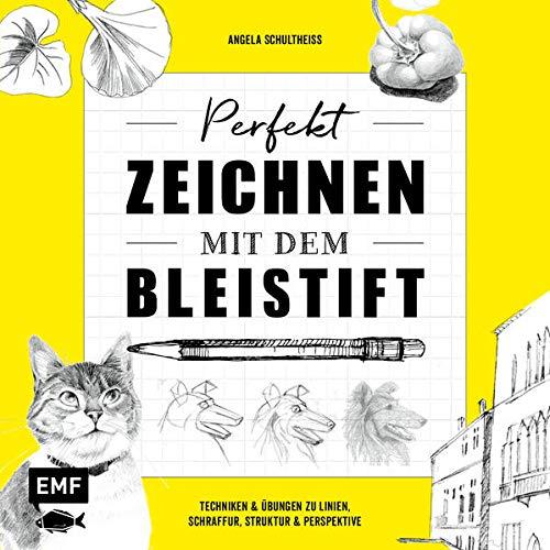Perfekt zeichnen mit dem Bleistift: Techniken & Übungen zu Linien, Schraffur, Struktur & Perspektive