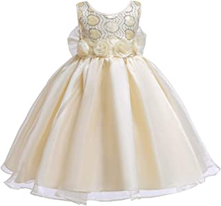 LUKEEXIN Golden Beads Organza Princess Dress Prom Ball Gown with Skirt for 2-12 Years Old