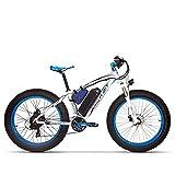 RICH BIT vélo électrique TOP-022 26 Pouces 1000W vélo de Montagne 48V 17AH Batterie Gros Ebike...