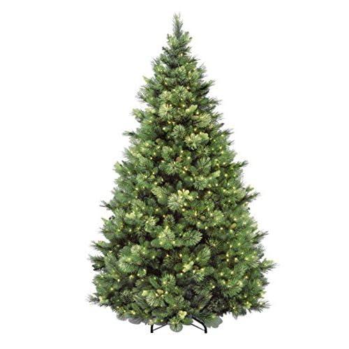 Natural Christmas Tree Amazon Com