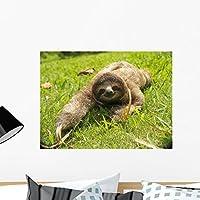 Cute Three Toe Sloth Wall Mural by Wallmonkeys Peel and Stick Graphic (24 in W x 18 in H) WM53911 [並行輸入品]