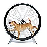 StarSun Depot GoPet Treadwheel for Large Dogs