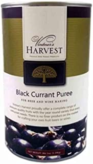 Best vintners harvest black currant Reviews