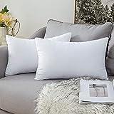 miulee 2 inserti di cuscino imbottitura del guanciale anallergico morbido in cotone e poliestere antiacro decorativo comodo cofortevole per divano letto puro 30x50 cm