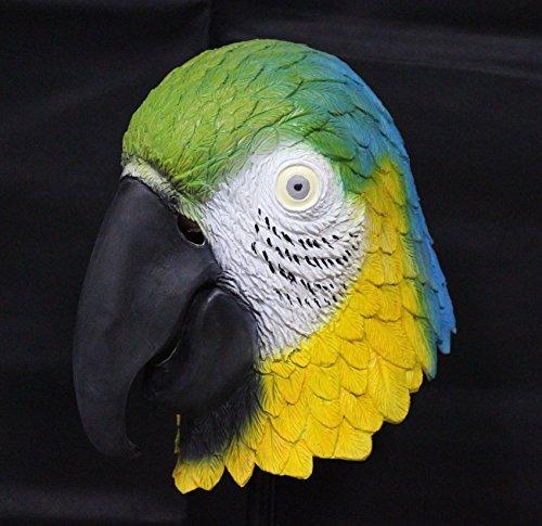 Le caoutchouc plantation TM 619219293563 Tropical Parrot Masque en latex Rainbow Bird Animal Halloween pour animal domestique, adulte, taille unique