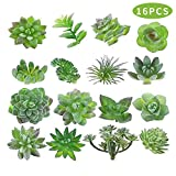 MAXZONE Fake Succulents 16pcs Artificial Succulents Picks Unpotted Faux Succulent Assortment in Flocked Green in Different Type Different Size Succulents Echeveria Agave Floral