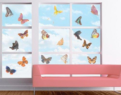 Apalis Sticker fenêtre no.468 Butterfly Set 65x62cm, Dimensions:62cm x 65cm
