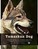 Tamaskan Dog: Choose best dog breeds for you (English Edition)