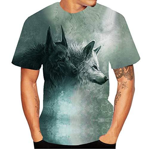 Yowablo Herren Poloshirt Polohemd Stehkragenshirt Kurzarmshirt Funktionsshirt Sportshirt Fitness Shirt Tee T-Shirt Sporthemd Trainingsshirt Sportswear T-Shirt (L,4Grau)