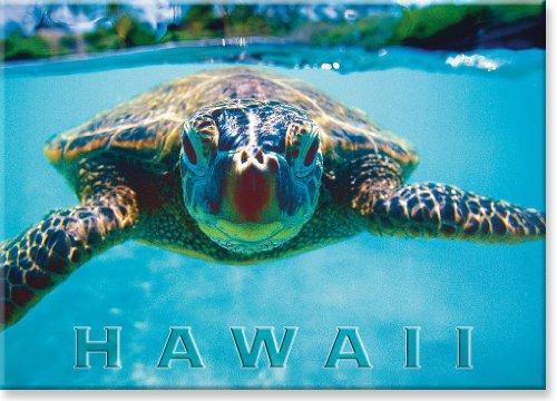 Imã de geladeira colecionável de arte havaiana - Honu (tartaruga)