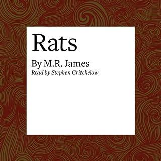 Rats audiobook cover art