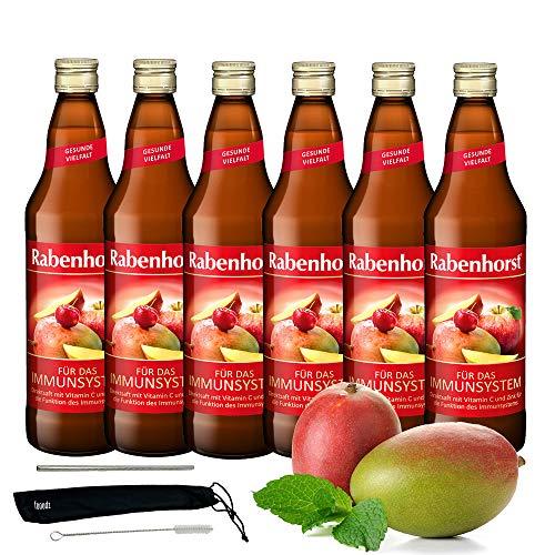 Rabenhorst Saft Für das Immunsystem 6x 700ml Vegan Mehrfruchtsaft mit Zink und Vitamin C - Harmonisch komponierter Direktsaft PLUS fooodz-Trinkhalm Set mit Reinigungsbürste
