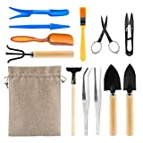 KOTWDQ Juego de herramientas básicas para bonsái, 12 piezas, herramientas de mano para jardín suculentas