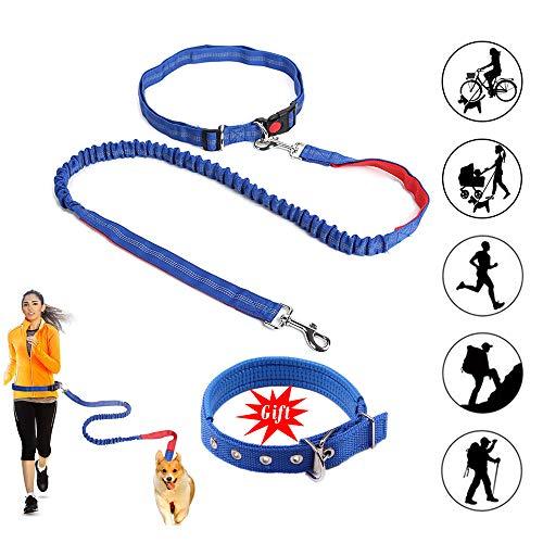 BASON joggingleine Hunde,Ideal zum Freisprechen, Joggen oder Laufen