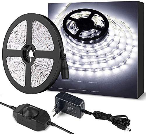 Tira de LED 5m, Tira Luz Regulable Blanca Fría 6000K, 300 LED SMD 2835, 12V Tiras Luces Autoadhesiva con Fuente de Alimentación y Interruptor, Flexible LED Strip para Habitación Armario Gabinete