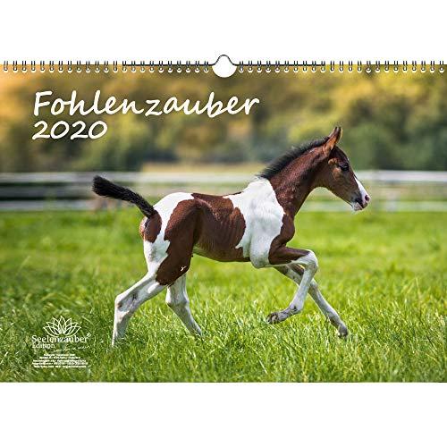 Fohlenzauber DIN A3 Kalender 2020 Pferde und Fohlen und zusätzlich 1 Geschenkkarte - Seelenzauber