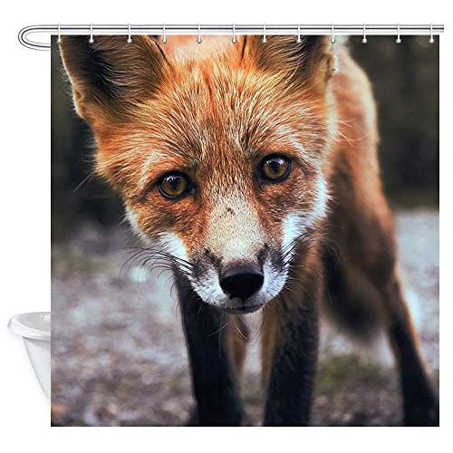 Aliyz Wild Animal Decor Bad Duschvorhänge Close up Porträt von Fox Face Polyester wasserdicht Frbric Duschvorhang Badzubehör mit Haken 71W X 71L Zoll