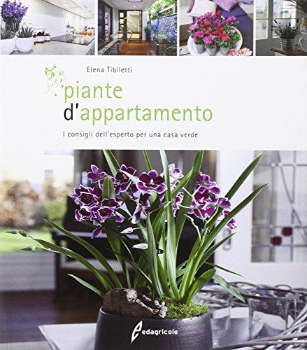 Piante d'appartamento. I consigli dell'esperto per una casa verde
