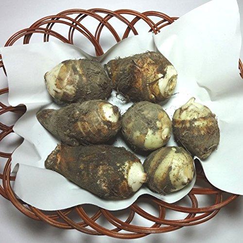 里芋(さといも)福岡産、九州産