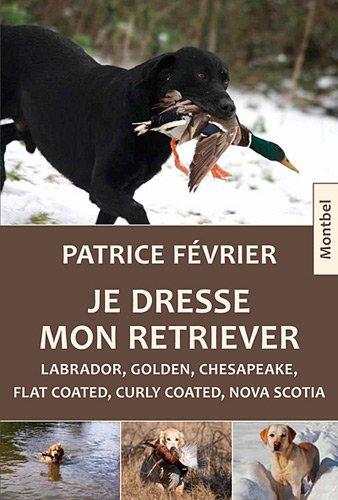 Je dresse mon retriever. Labrador, golden, chesapeake, flat coated, curlu coated, nova scotia