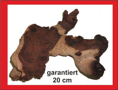 Mangrove Mopani- Wurzel, garantiert 20cm, Aquarium, Terrarium