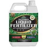 10. PetraTools Liquid Fertilizer, 16-4-8 Lawn Fertilizer, Liquid Lawn Fertilizer Concentrate & Grass Fertilizer For All Grass Types, Liquid Lawn NPK With Nitrogen Fertilizer Lawn Food Max Strength (32 Oz)