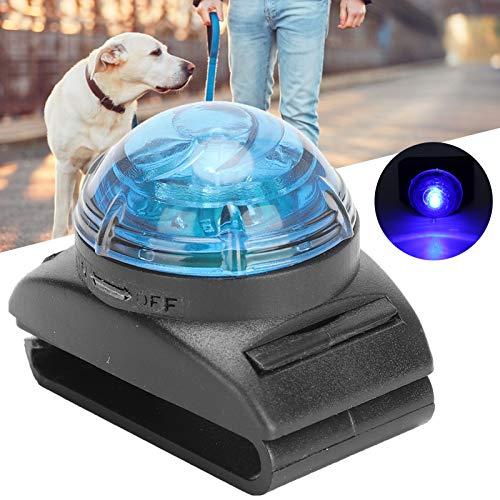 FASJ Luz LED para Collar, Accesorios para Perros Lámpara de Advertencia de Seguridad de Alta transmisión de luz Lámpara Colgante LED para Mascotas de Alto Brillo con diseño de Hebilla para la(Blue)