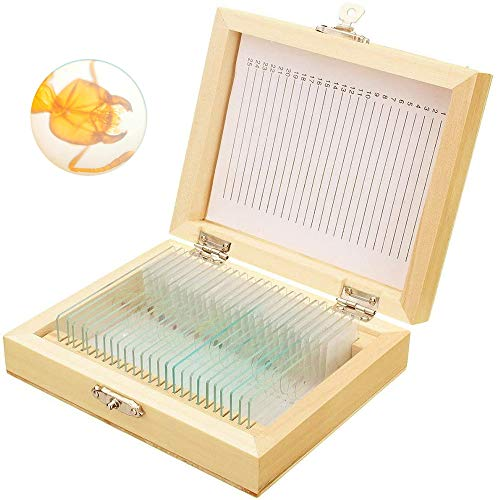 Bysameyee Prepared Microscope Slides with Specimens for Kids, 25 PCS Microscope Sample Slides Science Kit Set with Fitted Wooden Case for Basic Biological Education