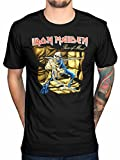 Official Iron Maiden Piece 2 of Mind Graphic T-Shirt Rock Metal Band Merch Black