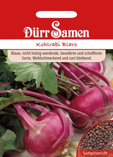 Dürr Samen 0522 Kohlrabi Blaro (Kohlrabisamen)