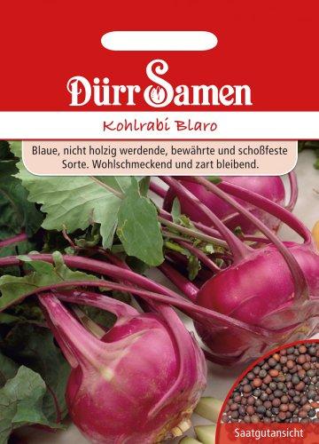 Dürr-Samen Kohlrabi Blaro