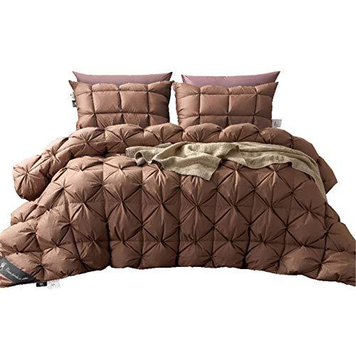 QWG 2,7~4,9 kg Gänsedaunen King Size Bettdecke, Twin Luxus Winterdecke Tröster Füller Weiß/Blau/Pink/Braun