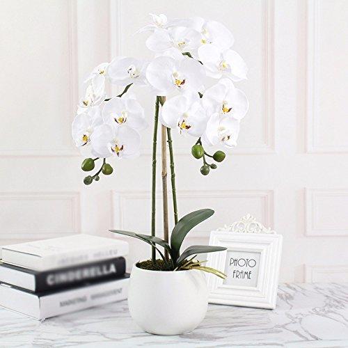 usdfjn artificielle fleurs de soie phalaenopsis artificielle decoration fausses Pot 60 cm blanc
